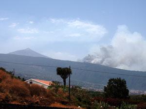 TenerifeFire
